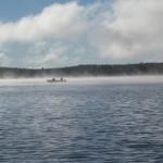 foggyfishing