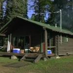 Wildwoodsnap16