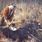 moose_6_lg