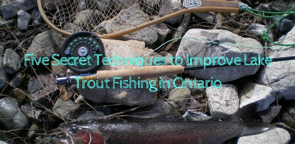 Lake trout fishing in ontario techniques for lake trout for Lake trout fishing tips