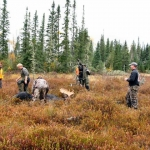 moose hunting ontario, lake savant resort ontario