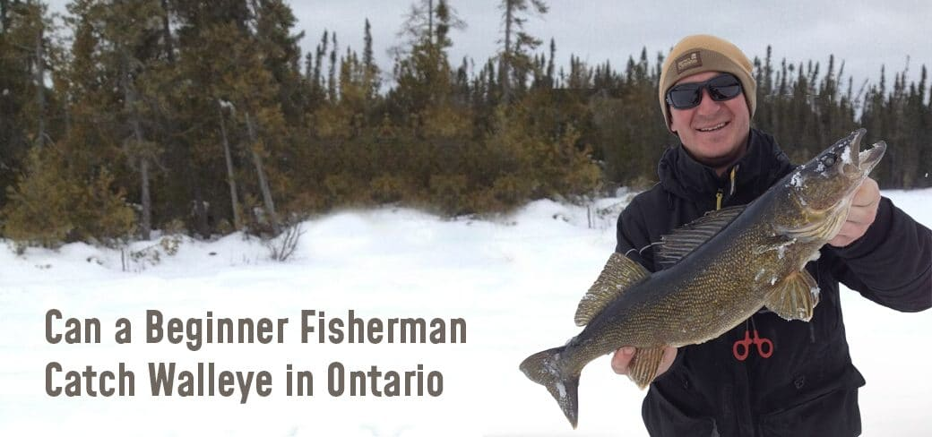 Can a Beginner Fisherman Catch Walleye in Ontario
