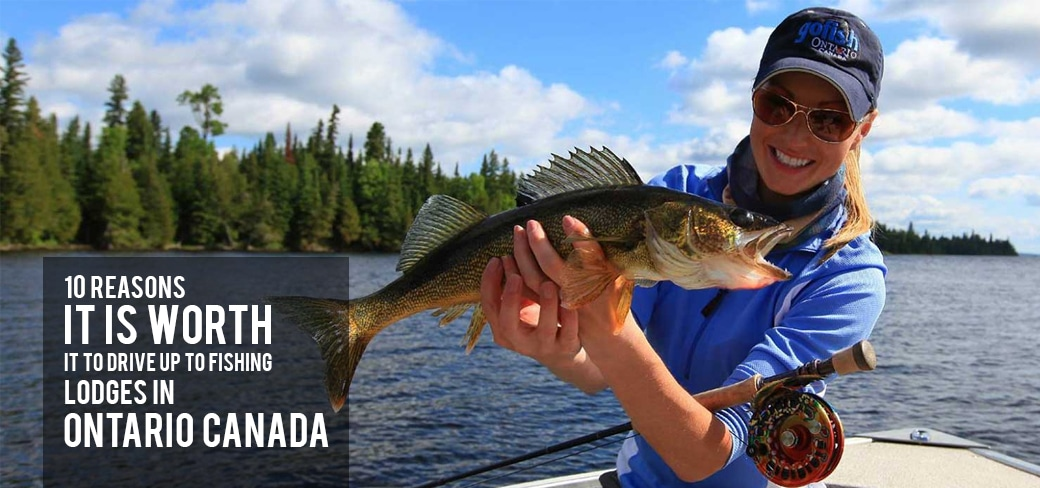 , 10 Reasons It is Worth it to Drive Up to Fishing Lodges in Ontario Canada