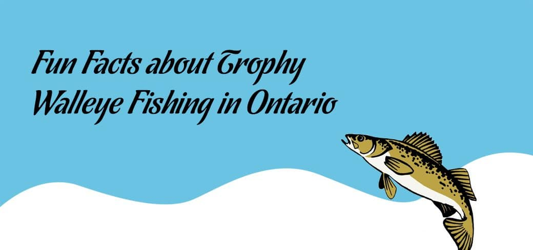 Fun Facts about Trophy Walleye Fishing in Ontario