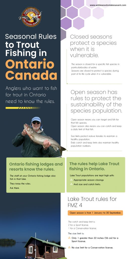 Seasonal Rules to Trout Fishing in Ontario Canada